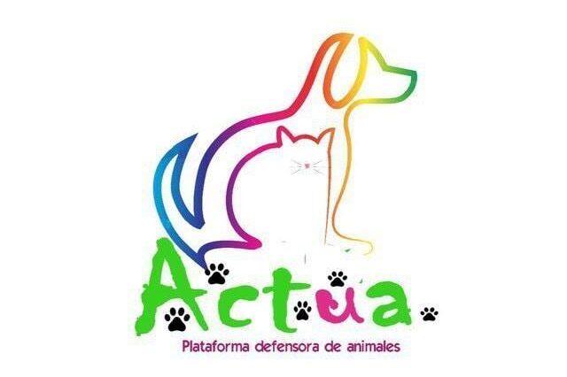 logo_actüa_animalista